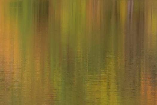 Fall Color Reflection by Paul Schultz