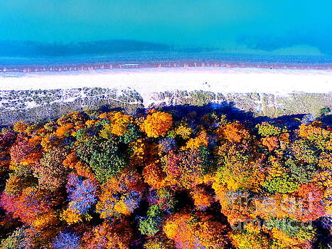 Fall Colors And Lake Michigan Beauty Of West Michigan by Jack Martin
