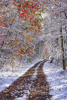 Fall Colors and Snow by Thomas R Fletcher