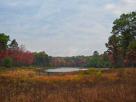 Fall Colors at Gladwin 4459 by Wesley Elsberry