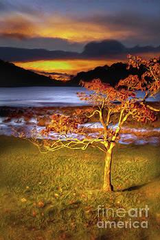 Dan Carmichael - Fall Colors at Sunrise in Otter Blue Ridge AP