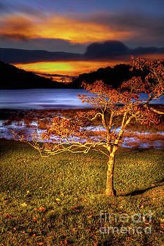 Dan Carmichael - Fall Colors at Sunrise in Otter Blue Ridge