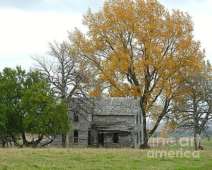 Fall Colors Brighten A Deserted Home by Kathy M Krause