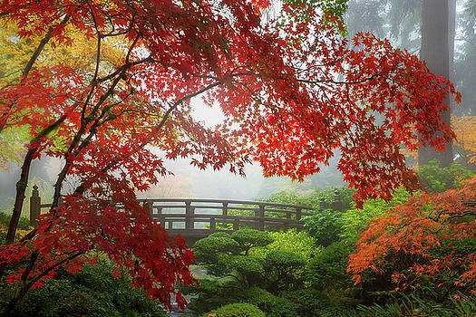 Fall Colors by the Moon Bridge by David Gn