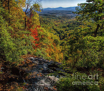 Barbara Bowen - Fall Colors from the Top of Amicolola Falls