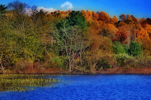 Fall Colors  HDR by Thomas  MacPherson Jr
