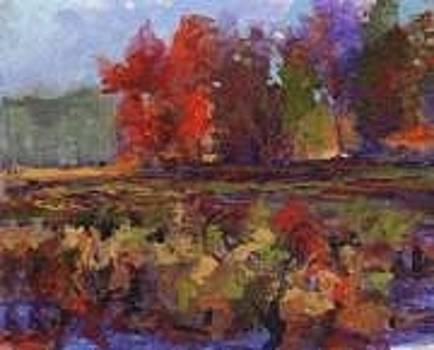 Fall Colors by Kay Geis