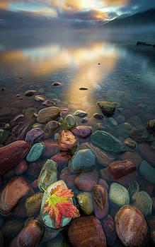 Fall Colors // Lake McDonald, Glacier National Park  by Nicholas Parker