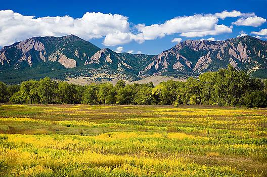 Marilyn Hunt - Fall Colors of Boulder Colorado