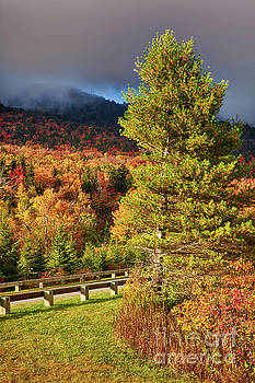 Dan Carmichael - Fall Colors on Grandfather Mountain
