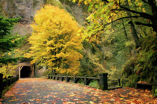 Fall Colors Oneonta Gorge Tunnel by Wes and Dotty Weber