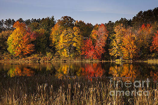 Fall Colors by Timothy Johnson