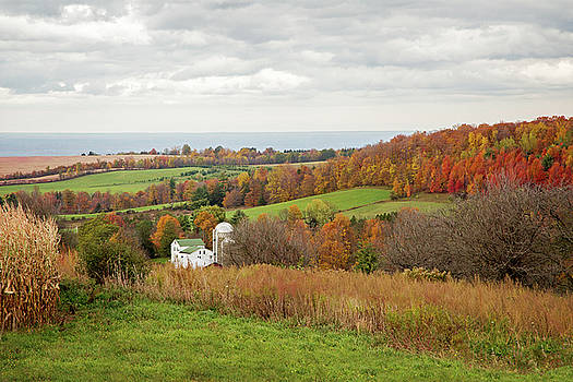 Fall Country Landscape and Oneida Lake by Brooke T Ryan