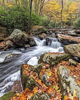 Fall Creek by Alan Raasch