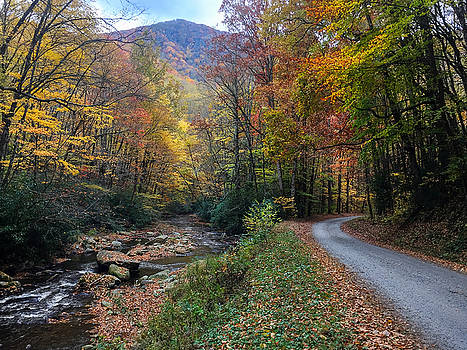 Fall Drive in the Smokies by Christopher Mobley