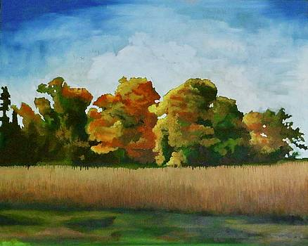 Fall Field by Lori A Johnson