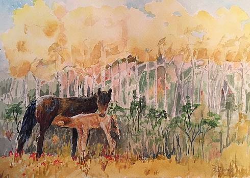 Fall foal by Christine Lathrop