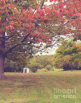 Fall Foliage and Old New England Shed by Edward Fielding