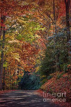 Dave Bosse - Fall Foliage