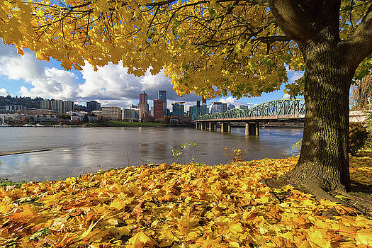 Fall Foliage with Portland Oregon City by David Gn