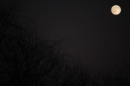 Fall Full Moon by Lars C