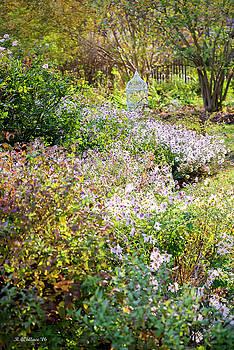 Fall Garden by Brian Wallace