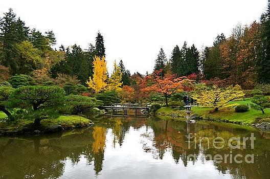 Fall Glory by Kiana Carr