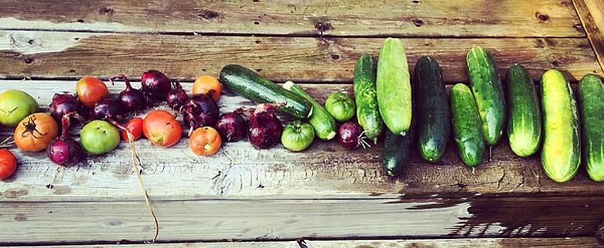 Fall Harvest by Kaira Lansing