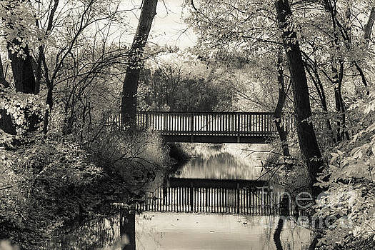 Fall in Black and White by CJ Benson