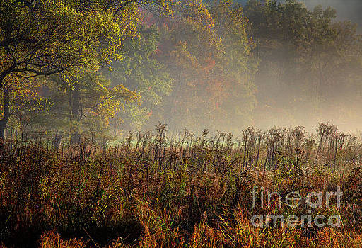 Fall In Cades Cove by Douglas Stucky