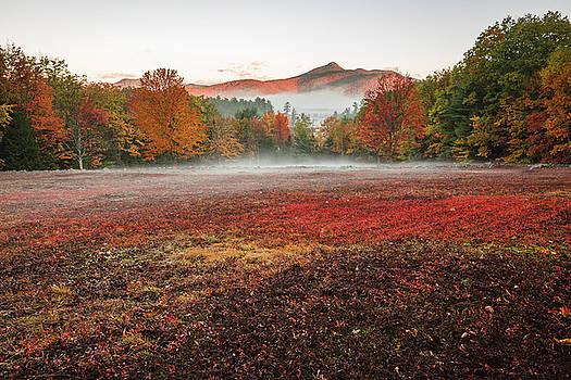 Fall in Chocorua by Robert Clifford
