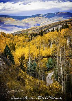 Fall In Colorado by Stephen Barela