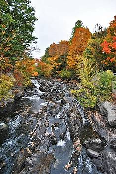 Fall in Dixfield,ME by Pamela Keene