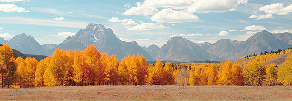 Fall in Grand Tetons National Park by Floyd Tillery