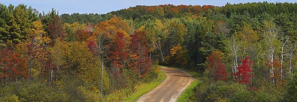 Fall in Michigan by Dick Bourgault