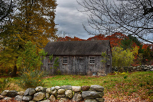 Fall In New England by Tricia Marchlik