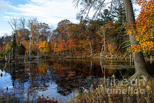 Fall in Parry Sound by Marj Dubeau