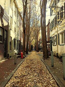 Fall in Philadelphia  by Marco Prado