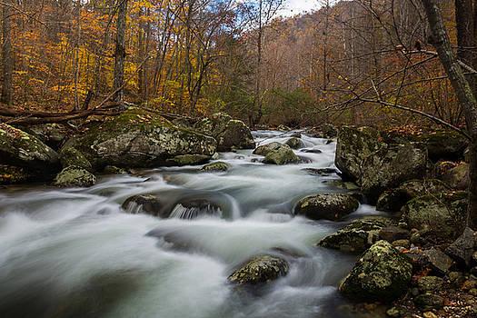 Fall in the Blue Ridge by Steve Hammer
