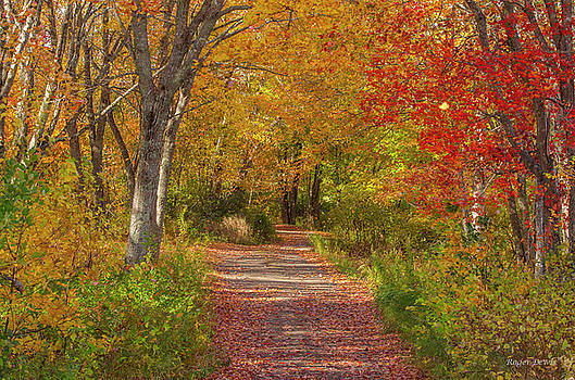 Fall in the Maritimes by Roger Lewis