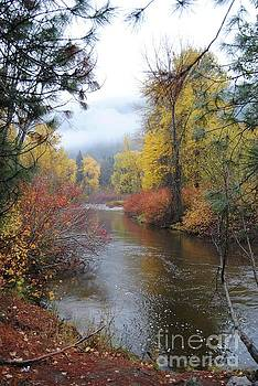 Fall In The Northwest by Beth Erickson