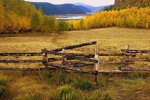 Marty Koch - Fall in the Rockies 2
