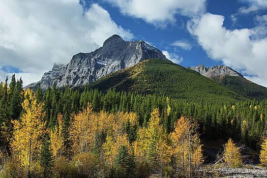 Fall in the Rockies by Celine Pollard