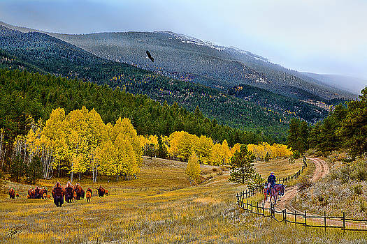 Fall In The Rockies by Tom Schmidt