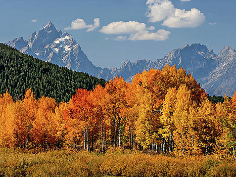 Fall in the Tetons by Wesley Aston