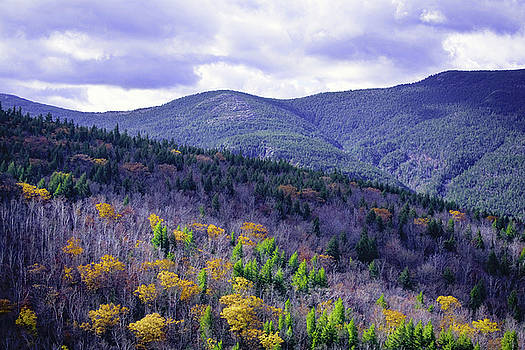 Fall in the White Mountains by Gary Shepard