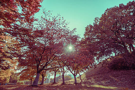 Fall in vintage style by Hyuntae Kim