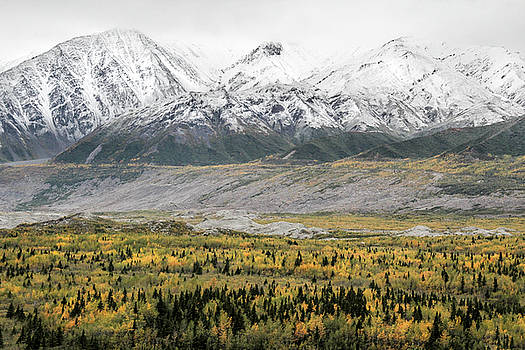 Fall in Wrangell - St. Elias by Marla Craven