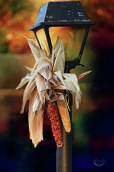 Fall Is Coming by Theresa Campbell