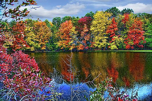 Fall Lake by Bruce Wood